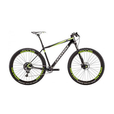 Bike hire Tenerife - FSI Carbon Team
